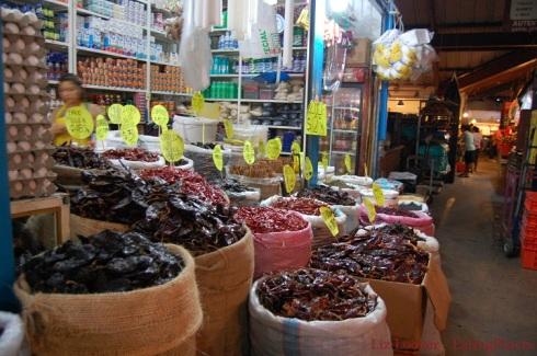 Oaxacan Chilies